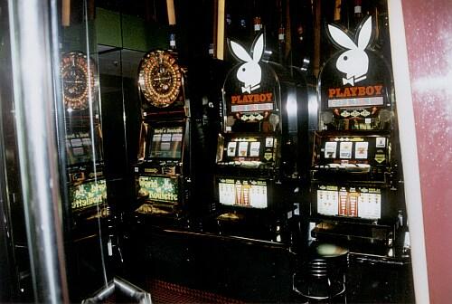 casino spiel mit bär