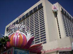 Das Flamingo Las Vegas