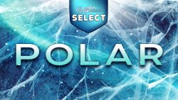 Bally Wulff Select Polar