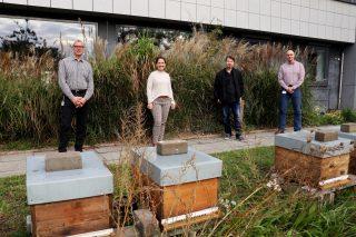 Das ÖKOPROFIT-Team von LOTTO Niedersachsen ist stolz auf die Auszeichnung.