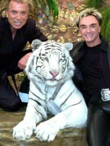 AP - Siegfried (l.)<br>und Roy mit Montecore